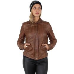 Vêtements Femme Vestes en cuir / synthétiques Oakwood Blouson  Nancy en cuir ref_40158 Tabac Marron