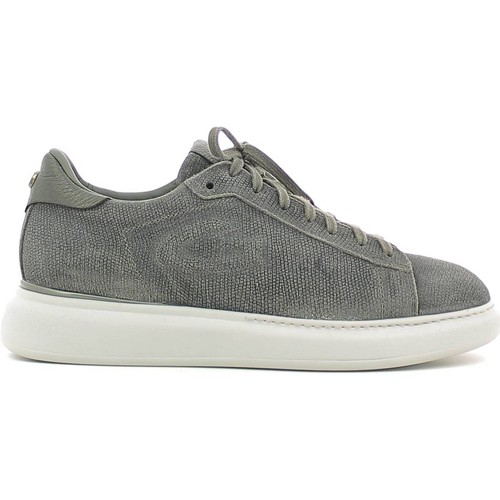 Chaussures Homme Baskets basses Alberto Guardiani SU73353C Sneakers Man Gris Gris