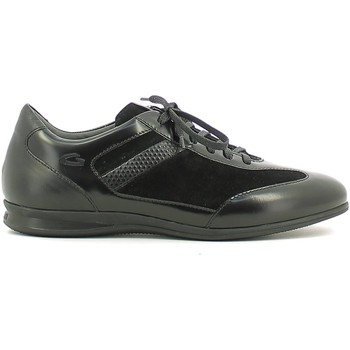 Chaussures Homme Baskets basses Alberto Guardiani SU73433F Sneakers Man Noir