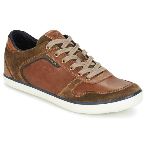 Chaussures Homme Baskets basses Geox BOX C Marron
