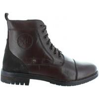 Chaussures Homme Bottes ville Xti 46318 Marrón