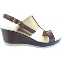 Chaussures Femme Sandales et Nu-pieds Cumbia 30133 Marrón