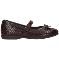 Chaussures Fille Ballerines / babies V-n MERCEDITAS/MANOLETINA NIÑA - marron