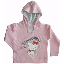 Vêtements Enfant Sweats Charmmy Kitty Sweat à capuche Rose