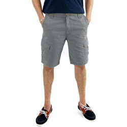 Vêtements Homme Shorts / Bermudas Sun Valley Crystoa gris ciment