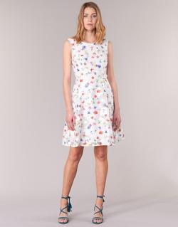 Vêtements Femme Robes courtes Derhy MAESTRIA Blanc