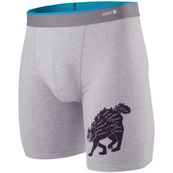 Vêtements Homme Boxers / Caleçons Stance Essentials Whiskey Cat Grey