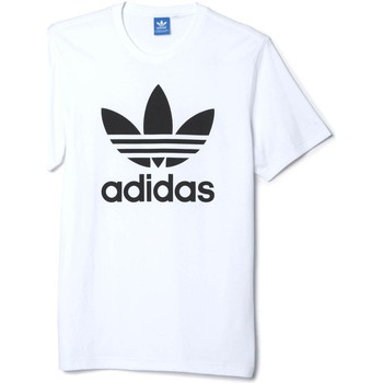 Vêtements Homme T-shirts manches courtes adidas Originals AJ8828 T-shirt Man Blanc Blanc