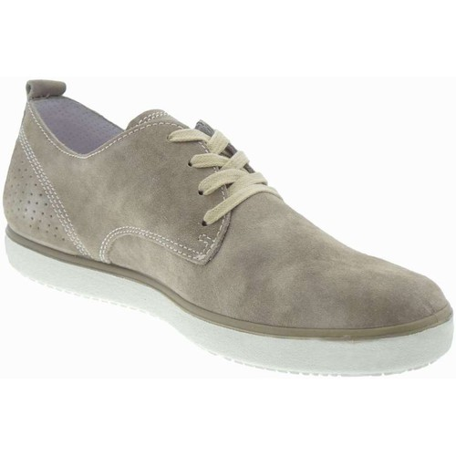 Igi&co 5721600  Homme tourterelle tourterelle - Chaussures Derbies Homme