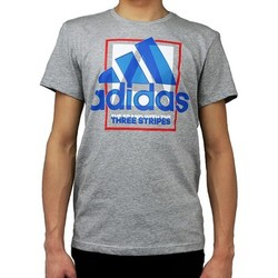Vêtements Homme T-shirts & Polos adidas Originals Country Logo Tshirt AI6035 Gris