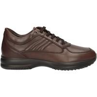 Chaussures Homme Baskets basses Imac 60990 U Sneakers Homme Marron Marron