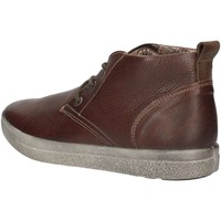 Chaussures Homme Baskets basses Imac 61750 U Bottines Homme Marron Marron