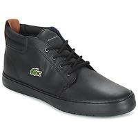 Chaussures Homme Baskets montantes Lacoste AMPTHILL TERRA Noir