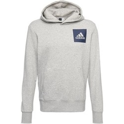 Vêtements Homme Sweats Adidas Athletics Sweat-shirt à capuche Essentials Logo Gris