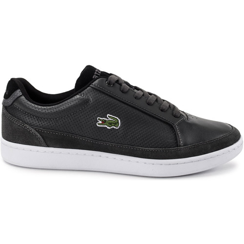 Chaussures Homme Baskets basses Lacoste Setplay 117 Gris
