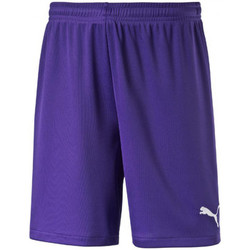 Vêtements Garçon Shorts / Bermudas Puma Short junior  velize violet