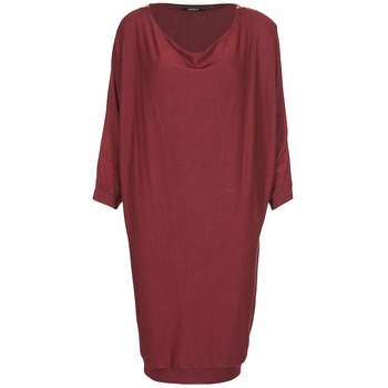 Vêtements Femme Robes courtes Kookaï BLANDI Bordeaux