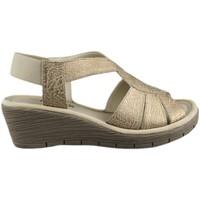 Chaussures Femme Sandales et Nu-pieds The Flexx FLEXX AMMAPETE BROWN