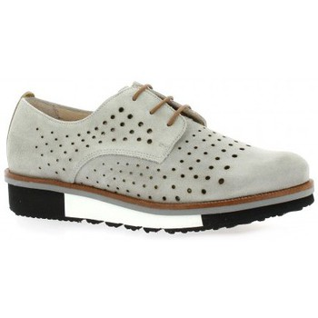 Chaussures Femme Derbies Riva Di Mare Derby cuir nubuck Gris