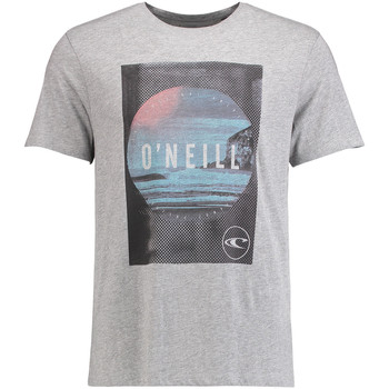 Vêtements Homme T-shirts manches courtes O'neill Venturer Silver melee