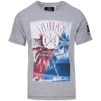 Vêtements Homme T-shirts manches courtes The Indian Face Tee Shirt ROBIN gris