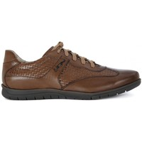 Chaussures Homme Baskets basses Lion ETRUSCO 311    131,3