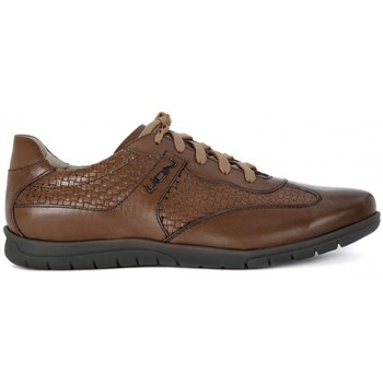 Chaussures Homme Baskets basses Lion ETRUSCO 311 Marrone