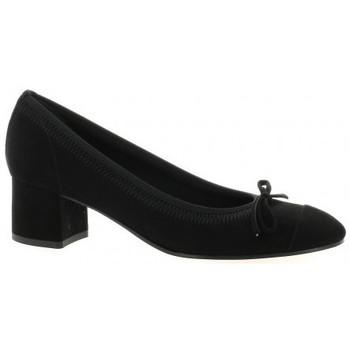 Chaussures Femme Escarpins Elizabeth Stuart Escarpins cuir velours Noir