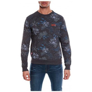 Vêtements Homme Sweats Ritchie SWEAT WELZO Gris
