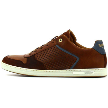 Chaussures Homme Baskets basses Pantofola d'Oro Auronzo Uomo low Tortoise Shell