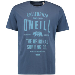 Vêtements Homme T-shirts manches courtes O'neill Muir Dusty Blue
