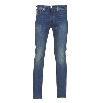Vêtements Homme Jeans skinny Levi's 510 SKINNY FIT Madison Square