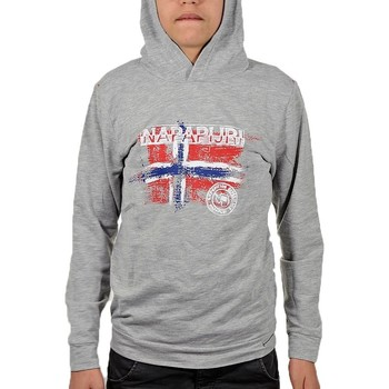Vêtements Enfant Sweats Napapijri k birada Sweat