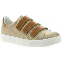 Chaussures Femme Baskets mode Impact Baskets cuir laminé Taupe