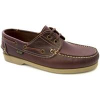 Chaussures Homme Chaussures bateau Danka Semelles fines nautiques  en cuir marrón