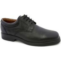 Chaussures Homme Derbies Danka Waiter chaussure dentelle  en noir negro
