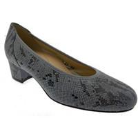 Chaussures Femme Escarpins Loren LO60713gr grigio