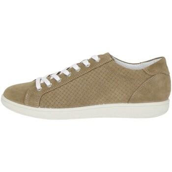 Chaussures Homme Randonnée Igi&co 7676500 Sneakers Homme tourterelle tourterelle