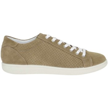 Chaussures Homme Randonnée IgI&CO 7676500 Tortora