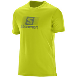 Vêtements Homme T-shirts manches courtes Salomon Blend Logo SS Tee Lime Punch