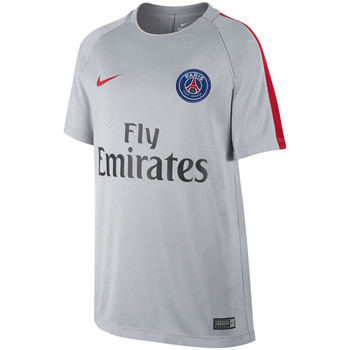 Vêtements Enfant T-shirts manches courtes Nike Paris Saint Germain Dry Squad Junior Wolf Grey / university Red