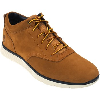 Chaussures Homme Baskets basses Timberland Killington half cab miel Camel