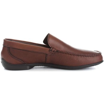 Chaussures Homme Mocassins Igi&co 7701600  Homme Brown Brown