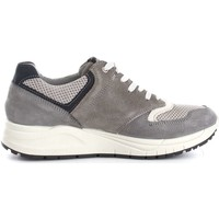 Chaussures Homme Baskets basses Igi&co 7715100  Homme Grey Grey