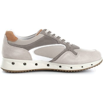 Chaussures Homme Baskets basses Igi&co 7716100 Basket Homme Grey/Pearl Grey/Pearl
