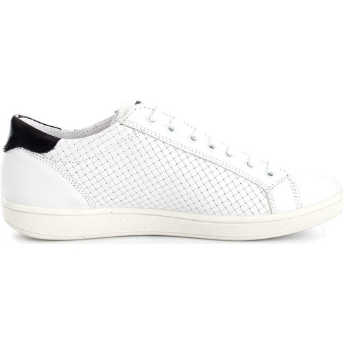 amp;co Homme Chaussures Igi 7676100 Basses Basket Baskets White 2IDWEH9Y