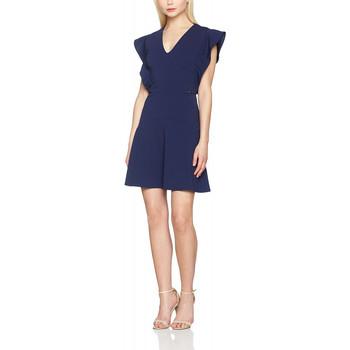Vêtements Femme Robes courtes Guess Robe Natacha Bleu 19