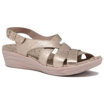 Chaussures Femme Sandales et Nu-pieds Wonders D7723- Or Or