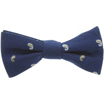 Vêtements Homme Cravates et accessoires Andrew Mac Allister noeud papillon dandy bleu Bleu