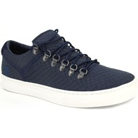 Chaussures Homme Ville basse Timberland Adv 2.0 Cupsole Alpe A1GRU y A1GR8 bleu